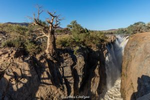 Epupa falls Kunene river Kaokoland with baobab tree